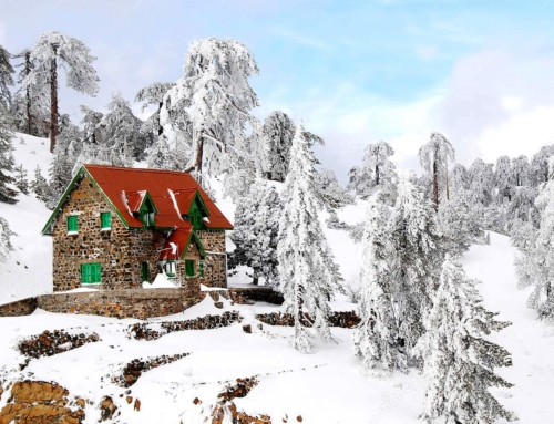 Village of the Month: TROODOS